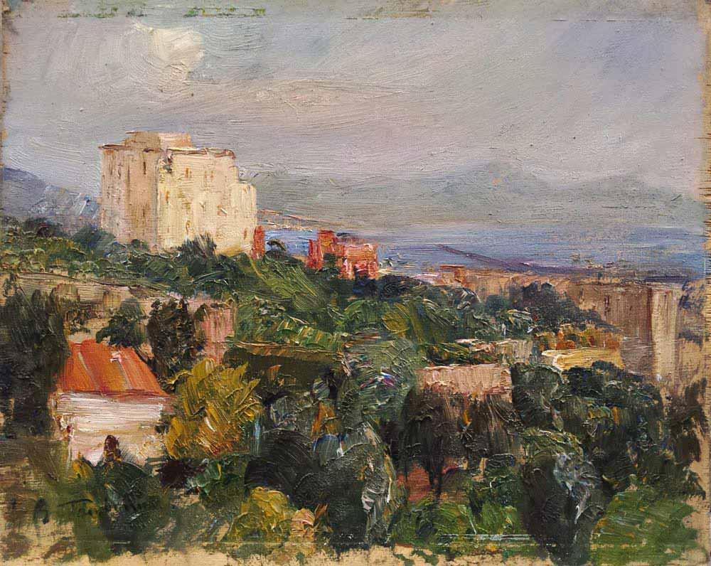 Veduta da Torre del Greco
